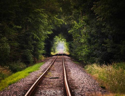 Die Bahn als großer Förderer im Umweltschutz