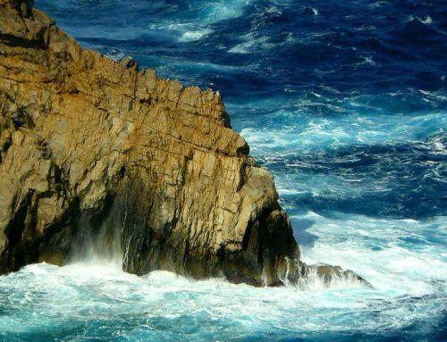Immobilien auf Mallorca – wohnen, wo andere Urlaub machen