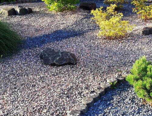 Steinwüsten sind die neue Art von Vorgarten