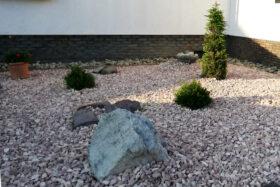 Schottergarten mit Pflanzen