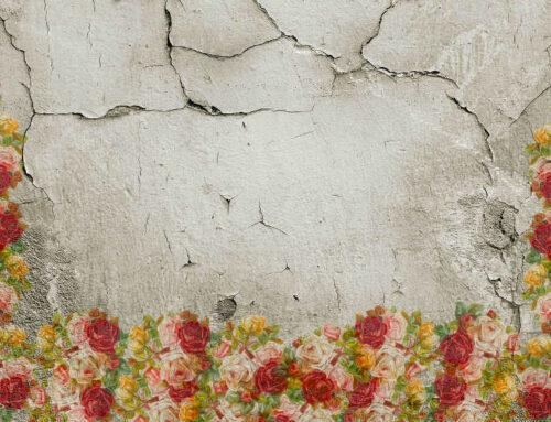 Selbst die Wohnung sanieren – Risse in den Wänden